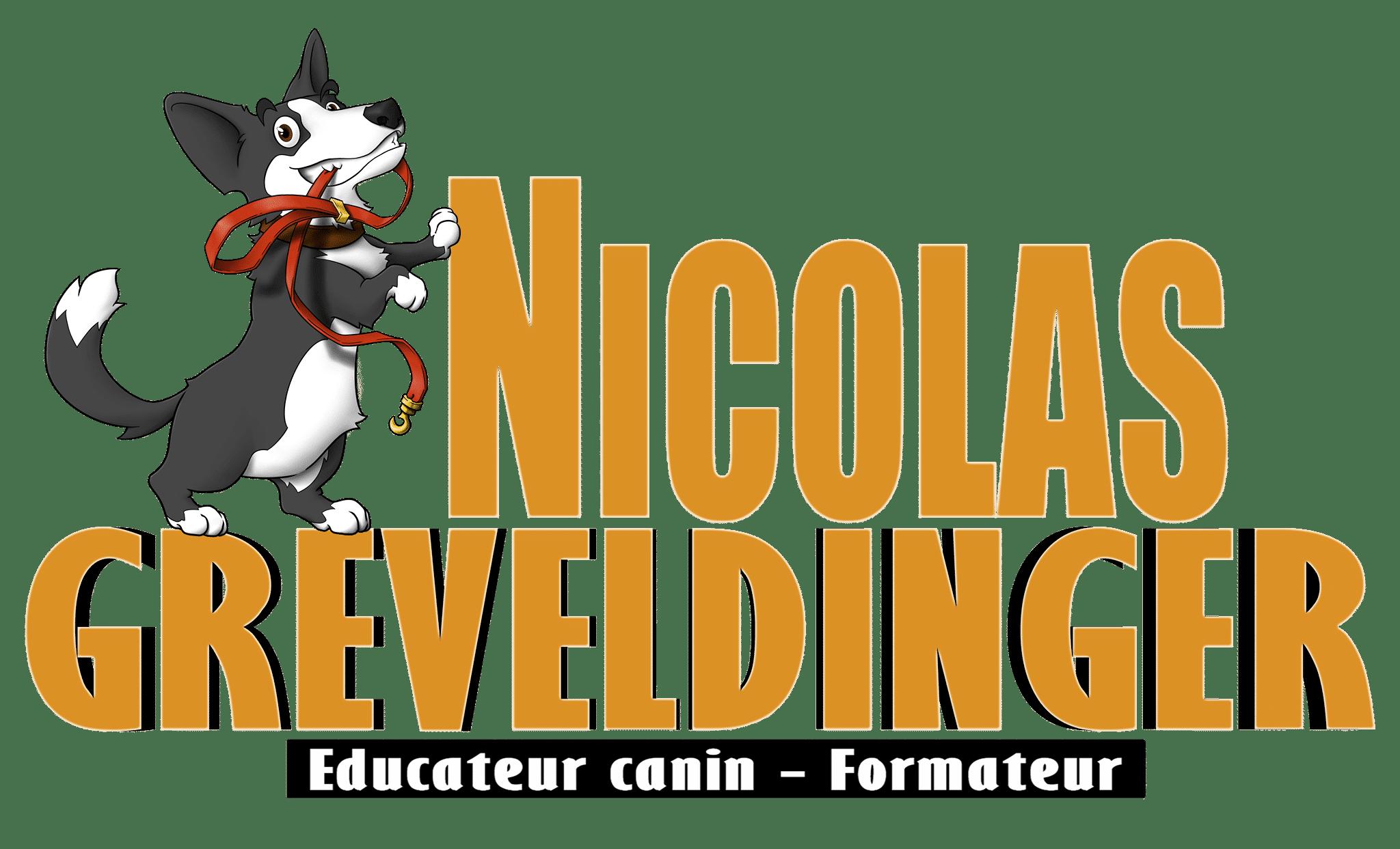 Nicolas Greveldinger