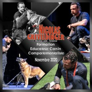 """Formation """"Educateur canin comportementaliste"""" Du 3 au 28 novembre 2020"""