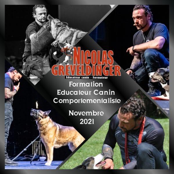Formation « Educateur canin comportementaliste » Du 2 au 27 novembre 2021